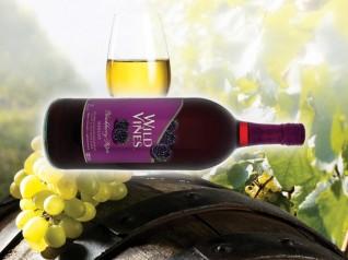 Плодовые вина для семейного ужина