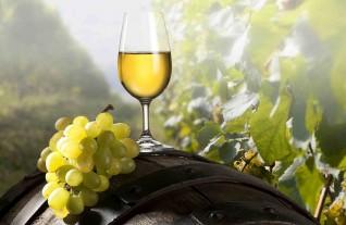 Аромат и вкус десертных вин