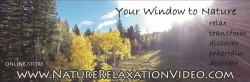 Nature Relaxation Video
