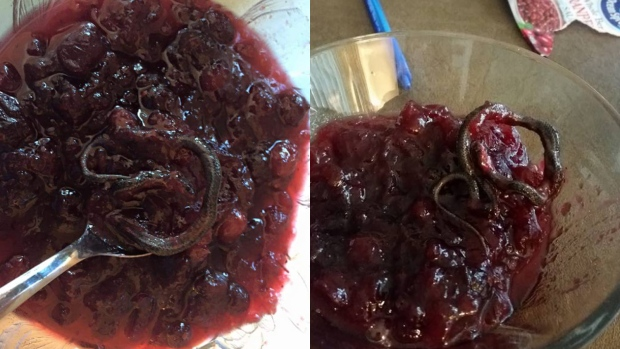 snake canned in cranberry sauce