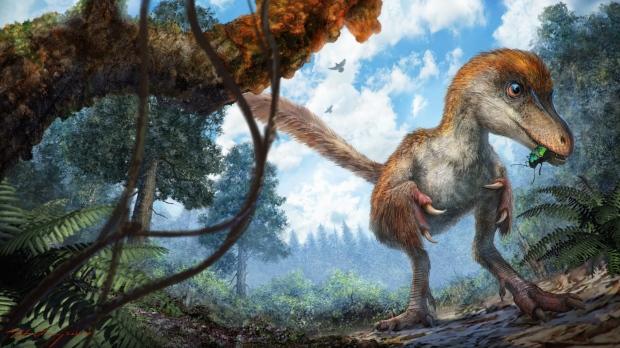 Ученые впервый раз вмире отыскали вянтаре фрагмент хвоста динозавра