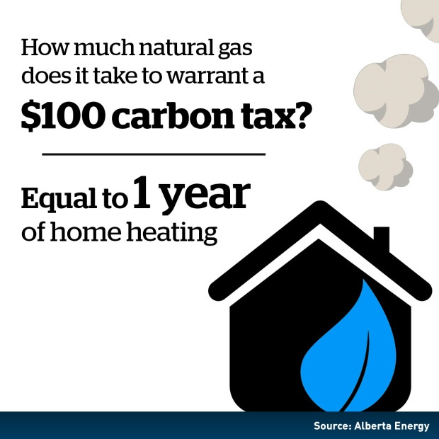 carbon tax essay The impact of carbon tax on the australian business   submitted to:.