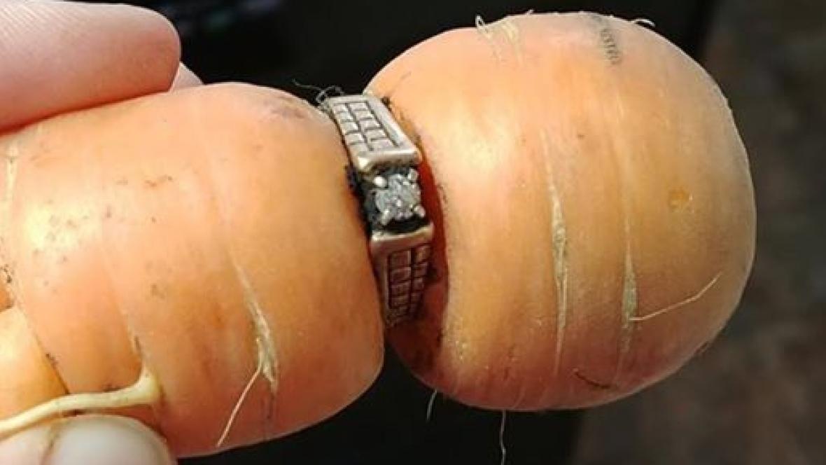 Потерянное 13 лет назад кольцо сбриллиантами вышло изземли наморкови