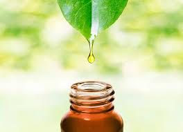 Лечение экземы эфирными маслами